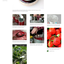 Thumb_indiefoods_yc_slides_page_2x